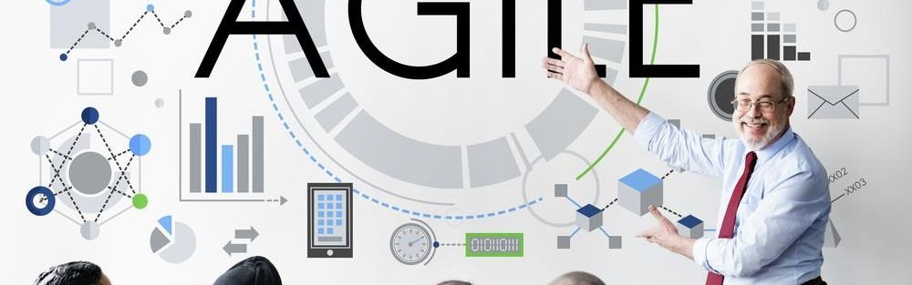Online training Agile in het kort